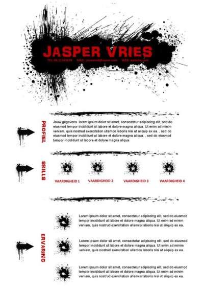 CV voor spuiter, airbrusher of kunstenaar met portfolio