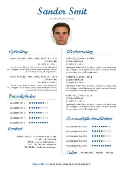 Template curriculum vitae blauw