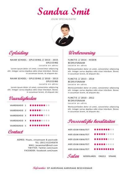 Template curriculum vitae roze