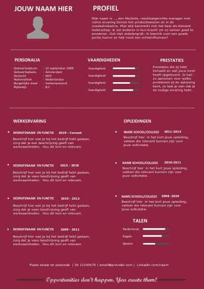 CV template voor o.a. studenten  | afgestudeerden | stages | starters